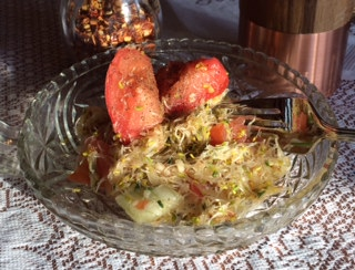 Alfalfa Sprout Salad, A Delicious Skinny Recipe