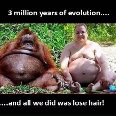 A Little Humpity Hump Day Humor